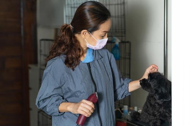Femme toiletteur coupe les cheveux d'un petit chien dans un salon