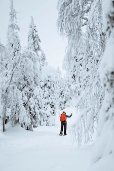 Femme trekking dans la neige en laponie, finlande