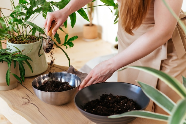Femme verse le sol dans le bol avec une truelle bouchent