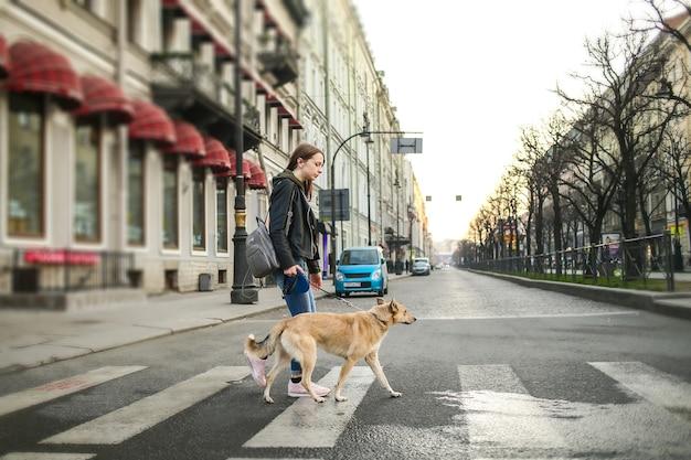 Femme en vêtements décontractés avec chien de berger obéissant sur lead crossing street on zebra