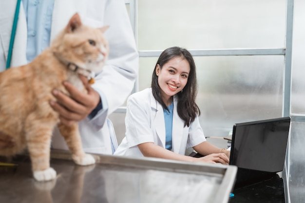 Femme vétérinaire souriante lors de la saisie à l'aide d'un ordinateur portable derrière un vétérinaire masculin examinant les chats à la clinique vétérinaire
