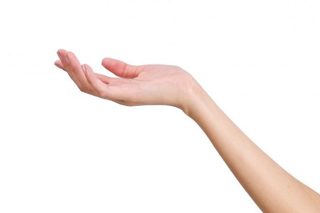 Femme vide main tenant avec la main avant isolé sur blanc