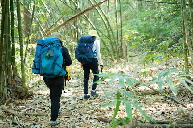 Femme de voyageur avec sac à dos trekking en forêt.
