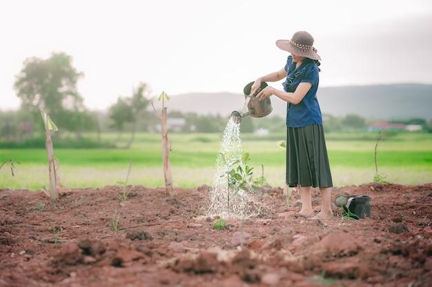 Femmes arrosant l'arbre au sol dans une ferme biologique en milieu rural