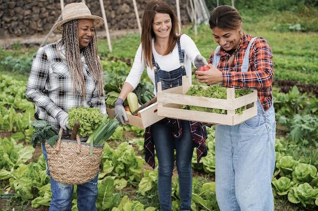 Femmes multiraciales tenant des boîtes en bois avec des légumes biologiques frais - main focus principal tenant du poivre