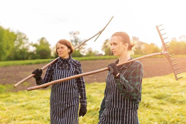Femmes ramassant de l'herbe