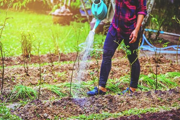 Les femmes utilisent l'arrosage d'allium tuberosum dans le jardin.