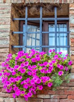 Fenêtre barrée avec un grand lit de fleurs de lilas