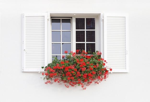 Fenêtre blanche et fleurs.