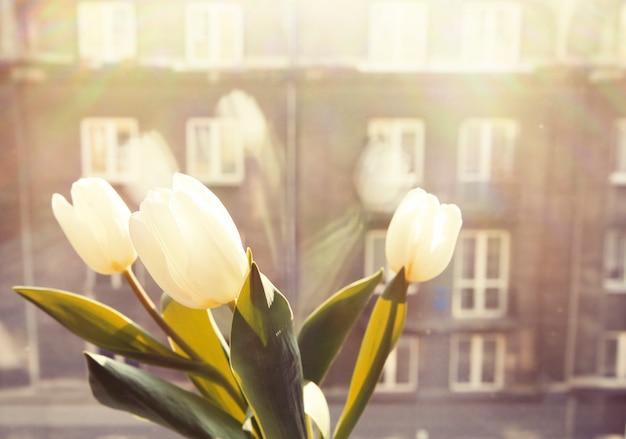 Fenêtre avec des fleurs