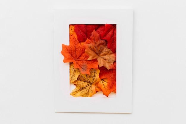 Fenêtre d'image dans le concept d'automne
