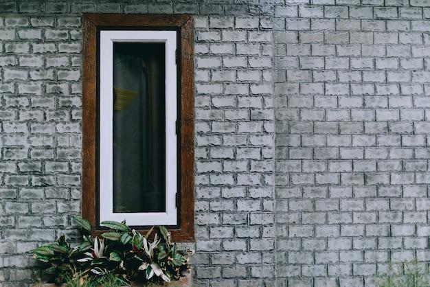 Fenêtre recouverte de lierre, une fenêtre presque envahie par un jardin