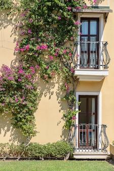 Fenêtres avec balcon sur façade de bâtiment avec ornements en fonte et arbre fleuri sur le mur à bodrum, turquie