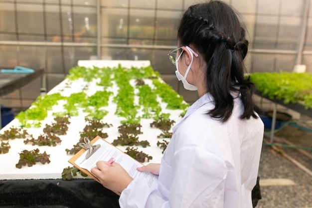 Ferme hydroponique, scientifique ou travailleur testant et collectant des données à partir de cultures hydroponiques de laitue.