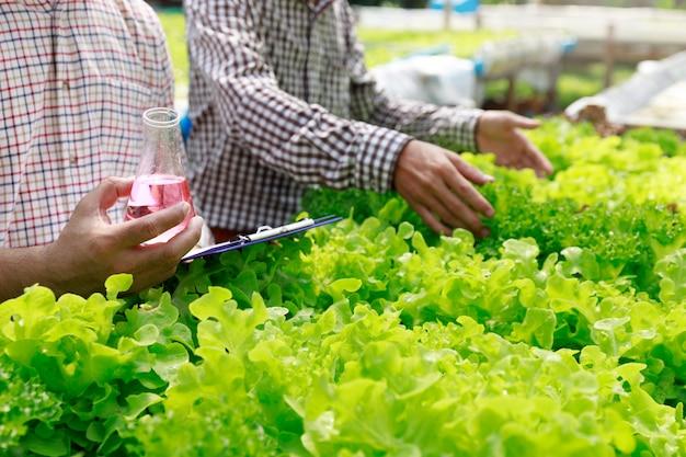 Ferme hydroponique, travailleur testant et collectant des données environnementales à partir de légumes hydroponiques biologiques de laitue au jardin de la ferme de serre.
