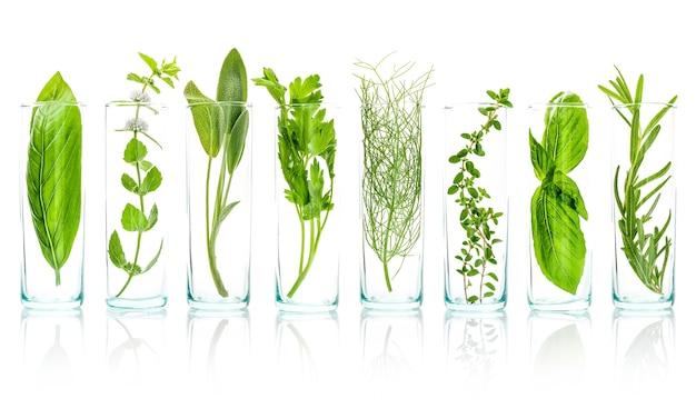 Fermer des bouteilles d'huiles essentielles avec des herbes fraîches isolés sur fond blanc.