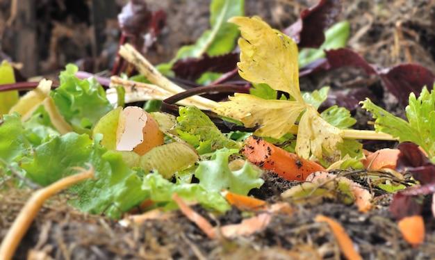 Fermer sur les écorces de légumes et autres déchets alimentaires dans un composteur