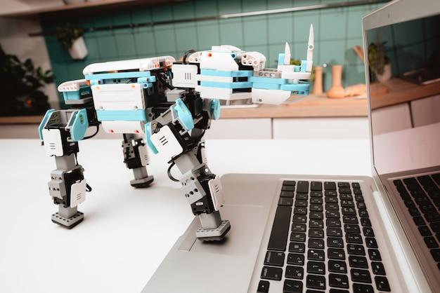 Fermer. un robot rhinocéros se dresse sur la table de la cuisine.