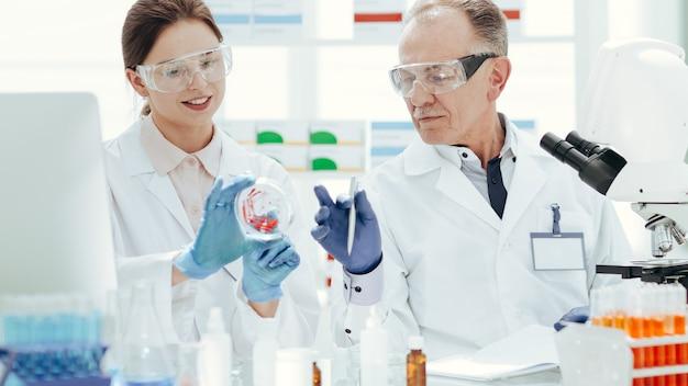 Fermer. scientifiques discutant d'échantillons assis à une table de laboratoire. science et santé.