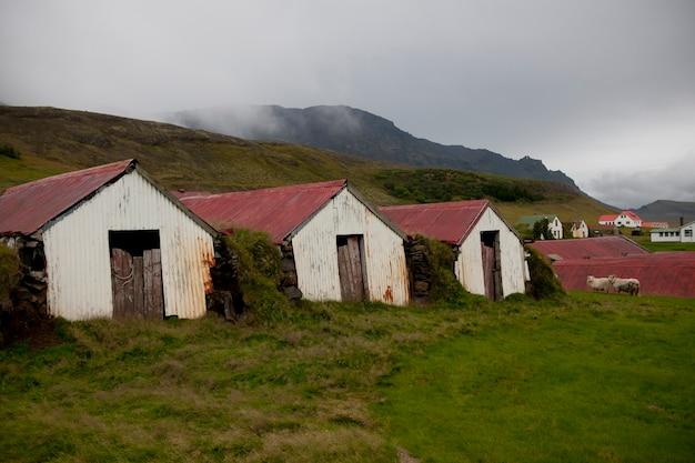 Des fermes blanches rouillées avec des toits rouges ondulés sur une colline brumeuse avec des maisons et des moutons en arrière-plan, et des nuages qui traversent les collines