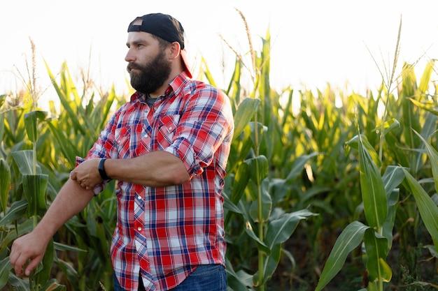Fermier américain dans un champ de maïs. agriculteur, gros plan du visage dans un champ de maïs. agriculteur s'amusant et dansant, regardant la caméra. concept d'agriculture technologie de pointe dans l'agriculture