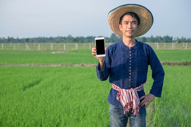 Un fermier asiatique porte un costume traditionnel, tient un smartphone et sourit à la ferme de riz vert
