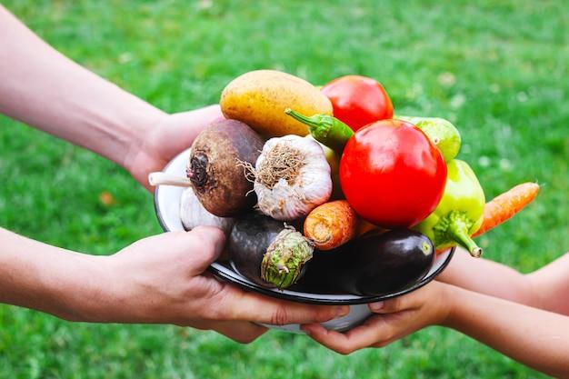 Un fermier et un enfant tiennent une récolte de légumes dans leurs mains. mise au point sélective.