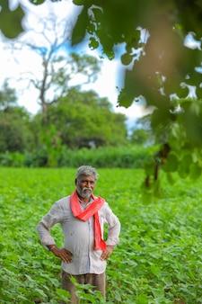 Fermier indien au champ de coton