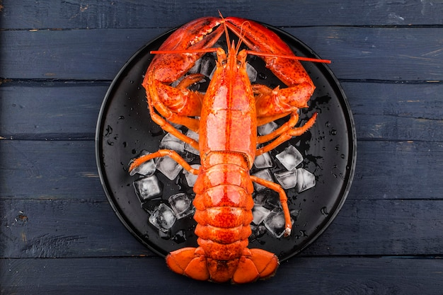 Festin de fruits de mer<citron et homard de boston frais sur la glace