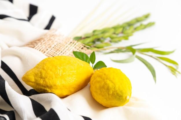 Fête juive de souccot. symboles traditionnels (les quatre espèces) : etrog (citron), loulav (branche de palmier), hadas (myrte), arava (saule)