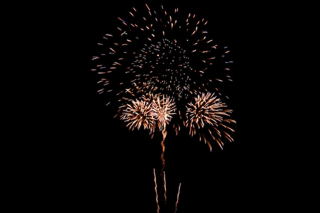 Feu d'artifice coloré contre un ciel nocturne noir. feux d'artifice pour le nouvel an. beau feu d'artifice coloré sur le lac urbain pour la célébration