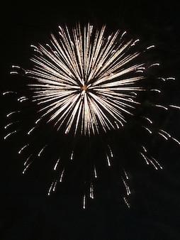 Feu d'artifice, explosion sur fond noir, feu d'artifice festif pour le nouvel an, 4 juillet, anniversaire. peut être utilisé comme élément de design pour vos photos