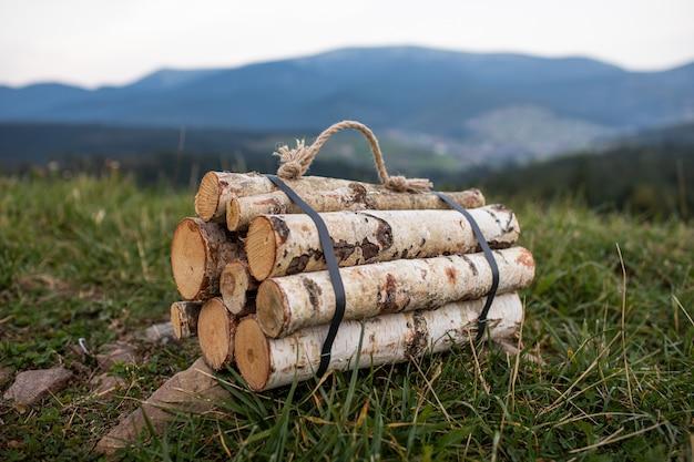 Feu de bois d'automne préparé pour le feu de camp
