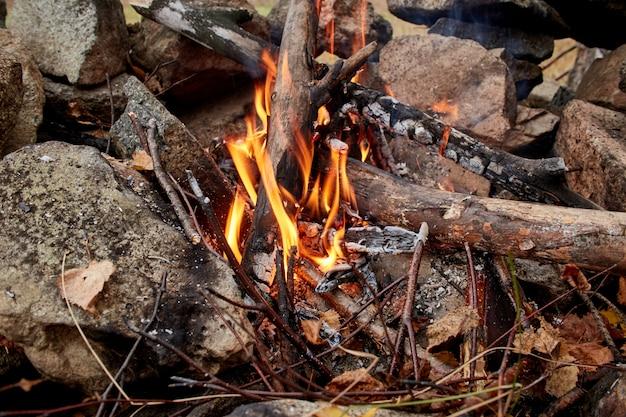 Feu de camp allumé dans la forêt d'automne. brindilles sèches brûlantes