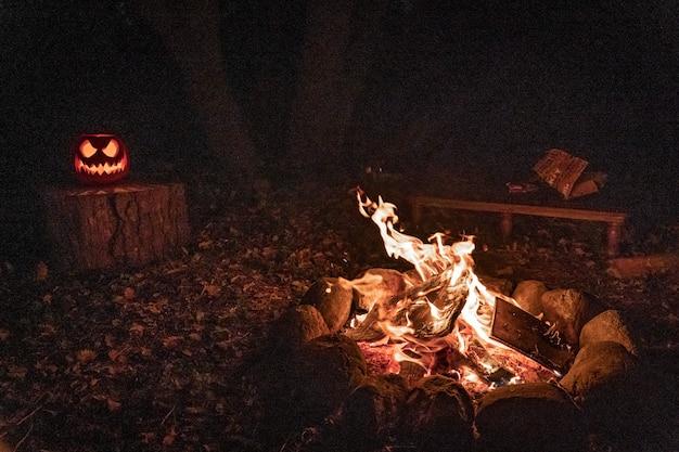 Feu de camp chaleureux et confortable dans la forêt feu d'étang en vacances pendant le camping