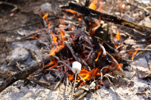 Feu de camp, friture de guimauves sur le bûcher