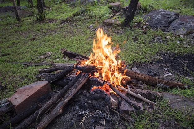 Feu de camping brûlant du bois