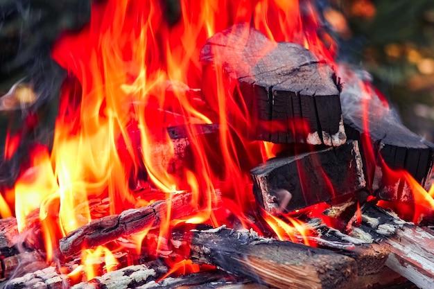 Un feu avec des charbons et du feu sur fond de pique-nique nature. brûle un feu de joie pour la nourriture dans la rue