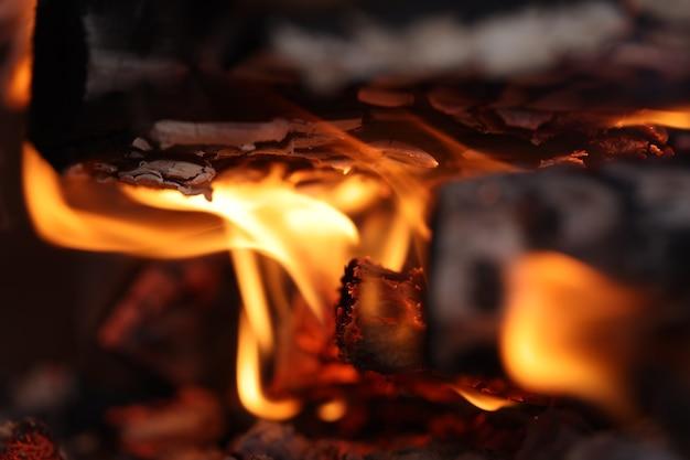 Feu de flammes oranges et branches d'arbres carbonisés dans la forêt en gros plan une manipulation prudente du concept d'incendie
