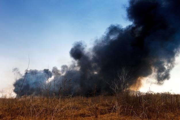 Feu de forêt avec de la fumée noire sur le terrain avec de l'herbe sèche.