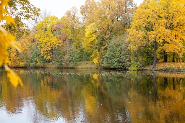 Feuillage coloré d'automne sur le lac avec de beaux bois