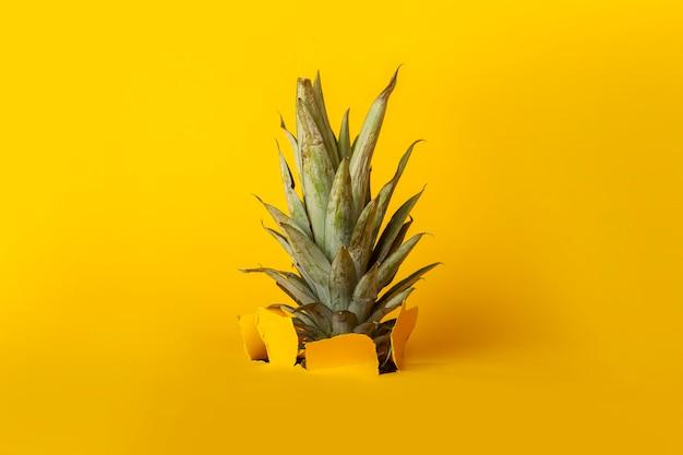 Le feuillage vert d'ananas brise un trou dans le fond de carton jaune