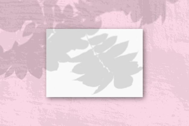 Une feuille a4 horizontale de papier texturé blanc sur le mur rose