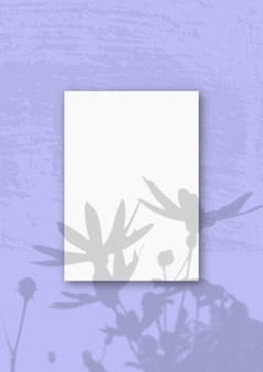 Une feuille a4 verticale de papier texturé blanc sur le mur lilas