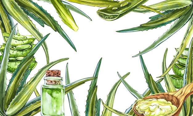 Feuille d'aloe vera fraîche verte avec du gel d'aloès dans une cuillère en bois.