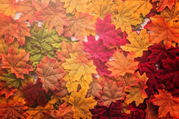 Feuille d'automne sur le vieux plancher de texture en bois vintage blanc avec espace copie gratuit