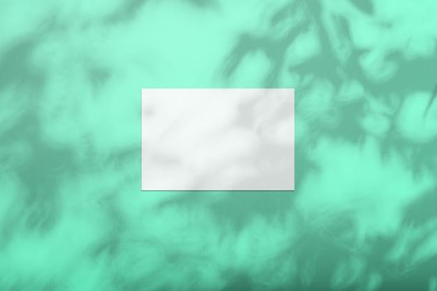 Une feuille blanche sur un mur coloré avec une ombre d'un arbre