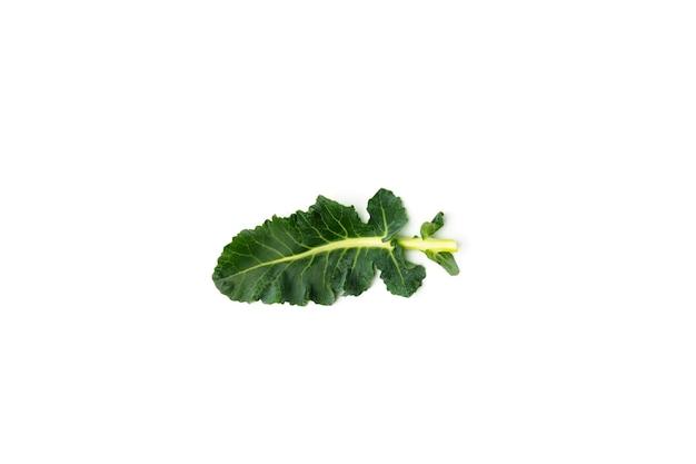 Feuille de brocoli vert isolé sur fond blanc