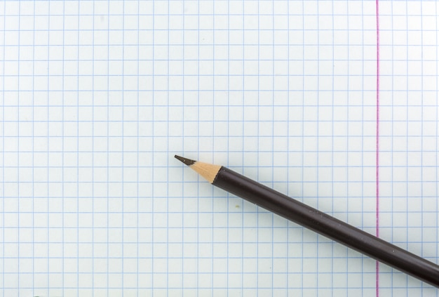 Une feuille de cahier d'école dans une cage. le crayon est marron sur la feuille.