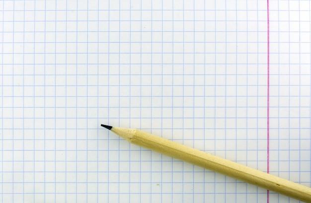 Une feuille de cahier d'exercices dans une cage. le crayon est sur la feuille.